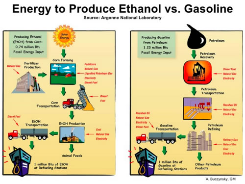 production of ethanol Effect of total sugar concentration on ethanol production the concentration of ethanol concentrations produced for 2% of ca-alginate bead were 60 the highest ethanol.